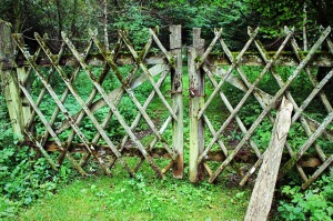 fence-436569_640