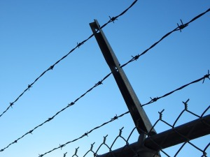 barbed-wire-482608_640(1)